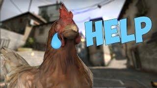 [CS:GO]Удаление куриц / ChickenSlayer
